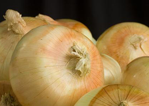 Vidalia Onion Season is Here