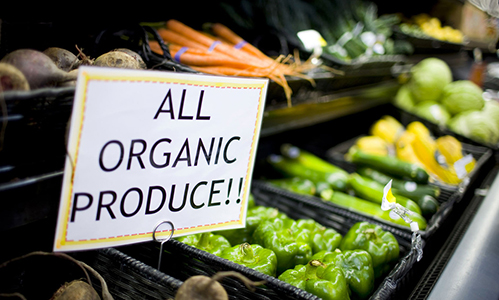 Organic Certification Process