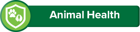Jump to Animal section